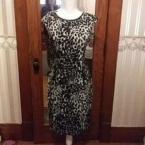Calvin Klein Dresses - Black n white leopard print sleeveless Dress